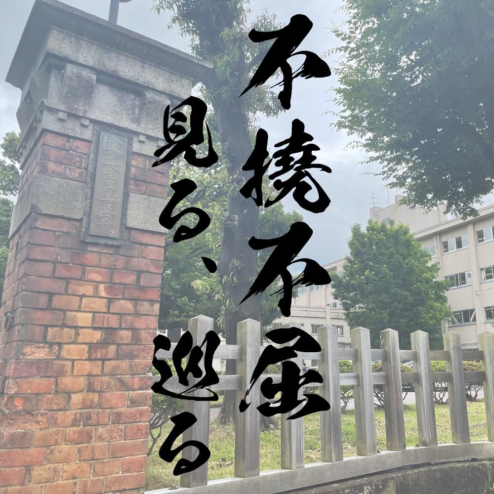 不撓不屈見る巡る 新潟県長岡市